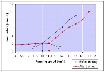 lactate_threshold_graph2